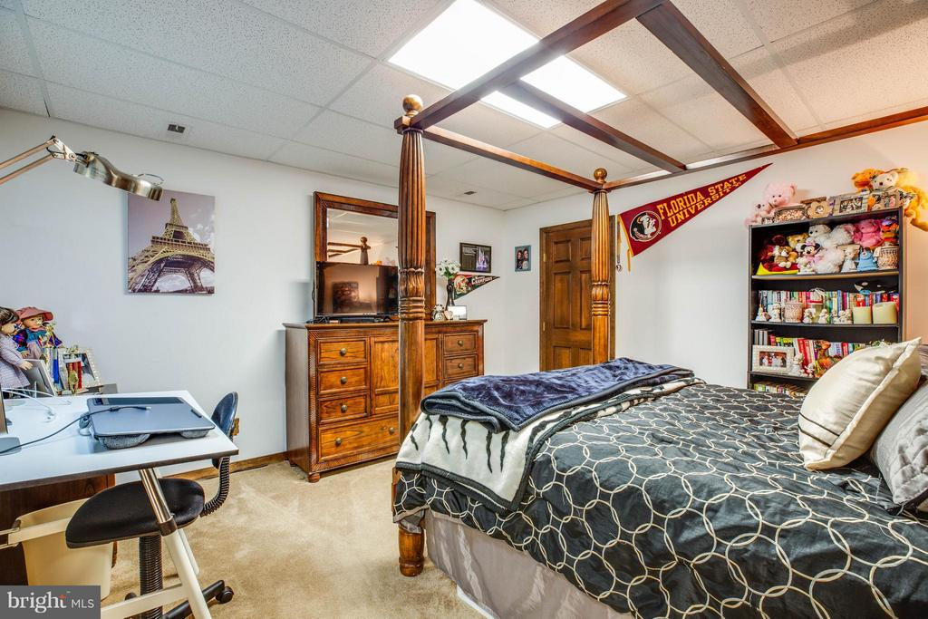 Basement Room - 3725 BREAKNOCK RD, BUMPASS