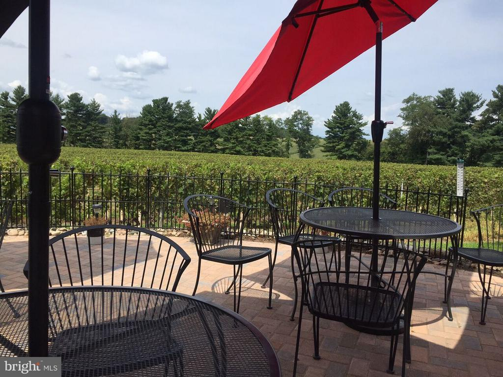 Tasting wine on the patio - 15113 LIBERTY RD, MOUNT AIRY
