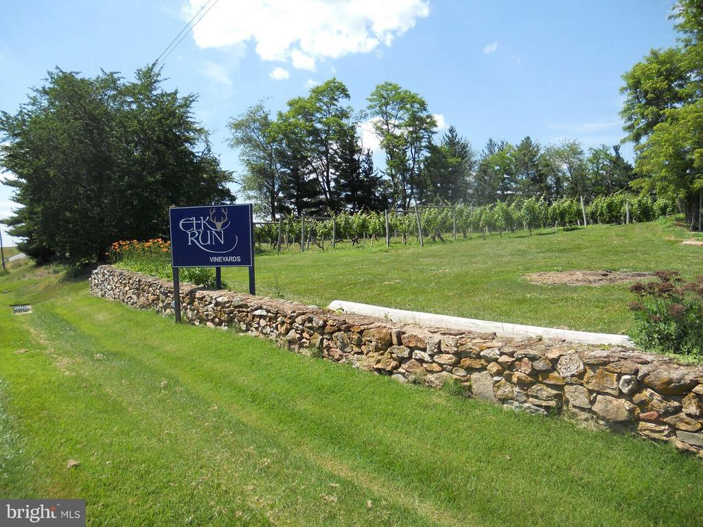 Elk Run Winery - 15113 LIBERTY RD, MOUNT AIRY