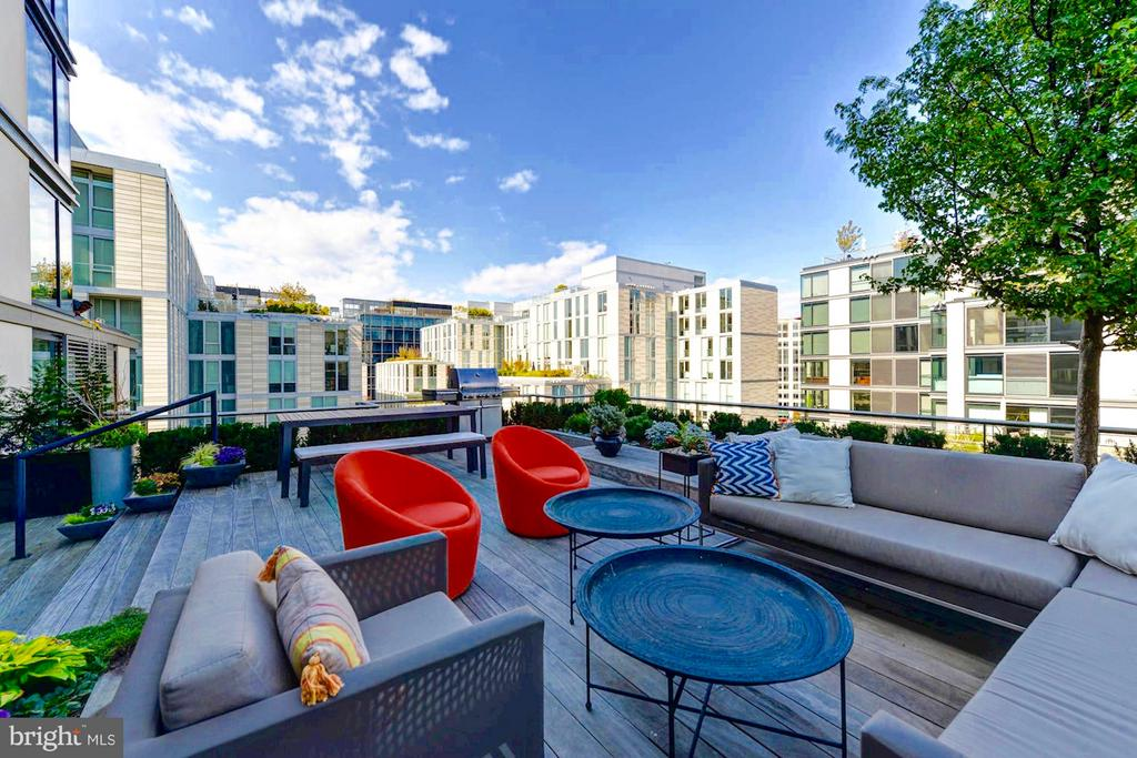 1,009 SF Private landscaped roof terrace. - 925 H ST NW #810, WASHINGTON