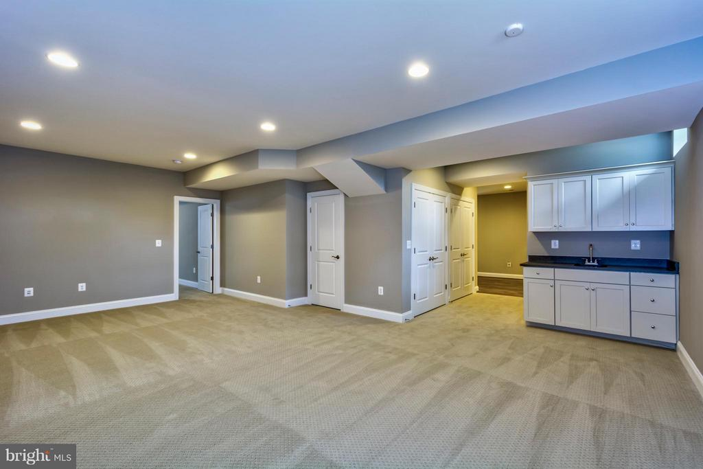 Basement - 19226 STONEY RIDGE PL, TRIANGLE