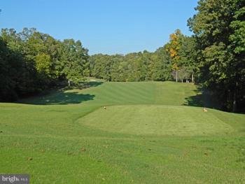 LAKE OF THE WOODS GOLF COURSE - 102 HARRISON CIR, LOCUST GROVE