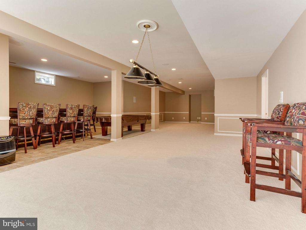 Basement - 19969 AUGUSTA VILLAGE PL, ASHBURN