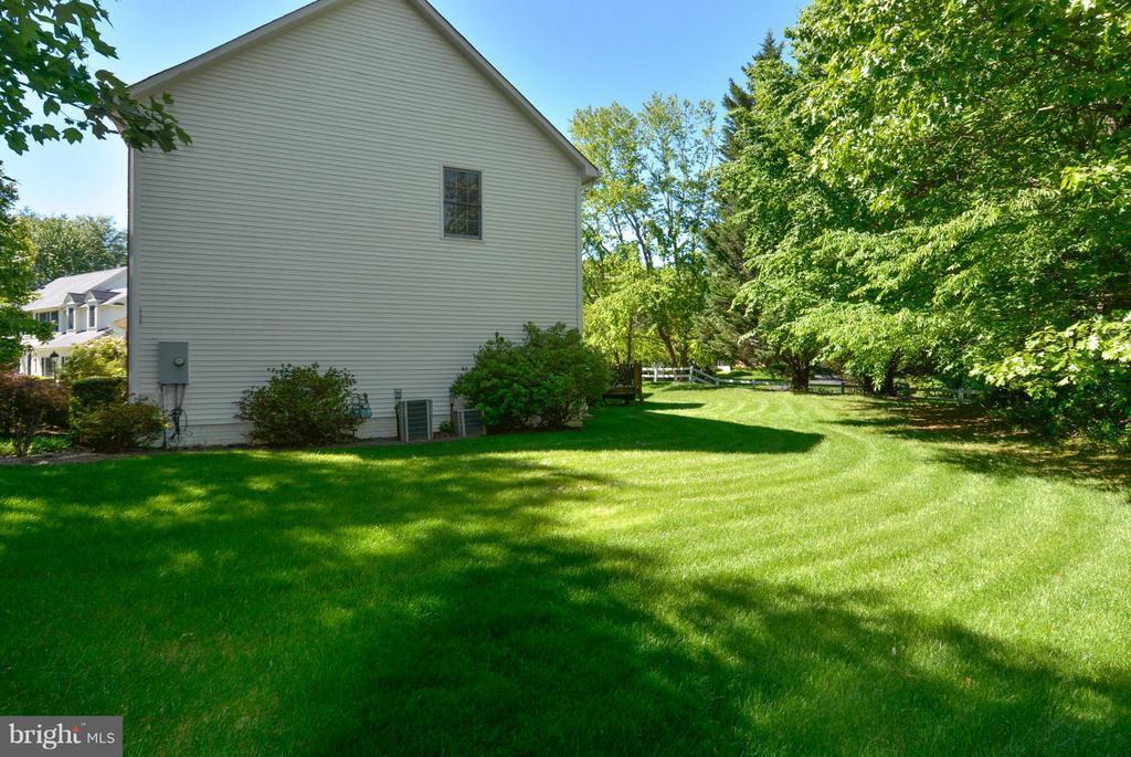 Plush Grass - 10106 DECKHAND DR, BURKE
