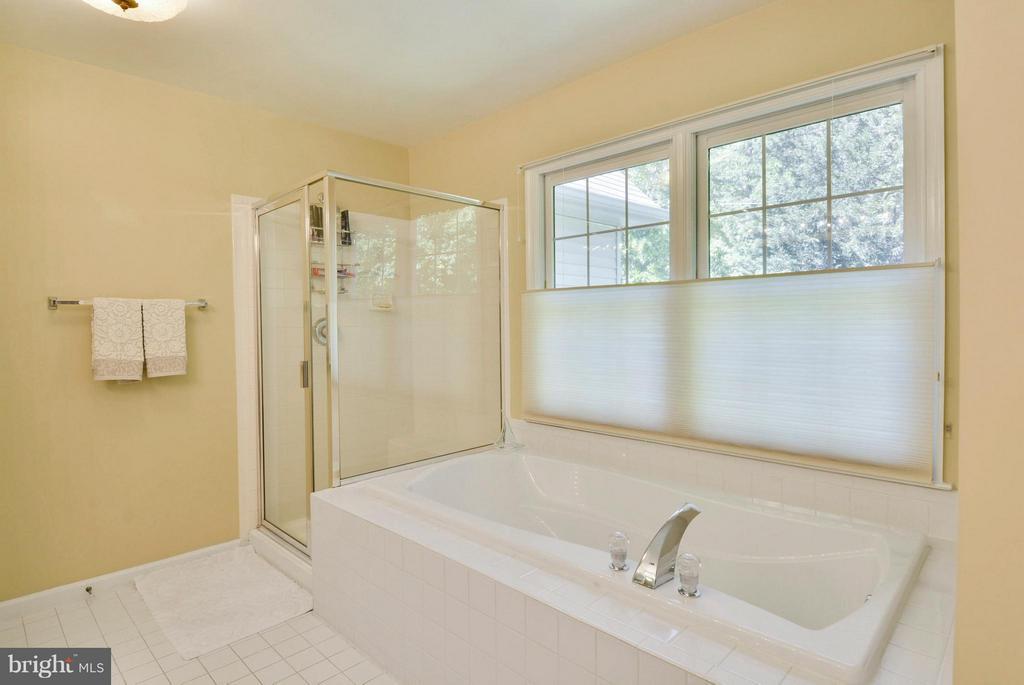 Master Bathroom with Soaking Tub - 10106 DECKHAND DR, BURKE