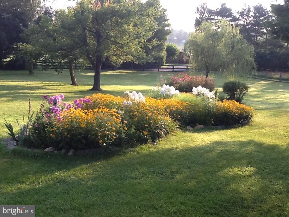 Spring/Summer flowers - 192 CHESTNUT LN, BERRYVILLE