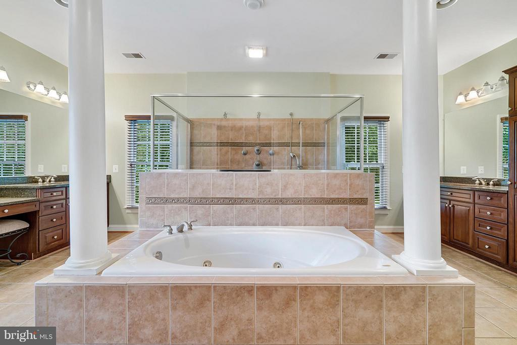 Grand Master Bathroom! - 27429 BRIDLE PL, CHANTILLY