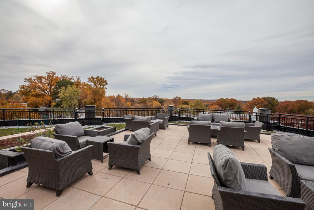 Green Rooftop Deck - 8005 13TH ST #302, SILVER SPRING