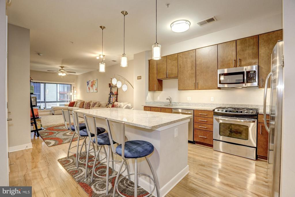 Huge open Kitchen/Living Room/ Dining Room - 8005 13TH ST #302, SILVER SPRING