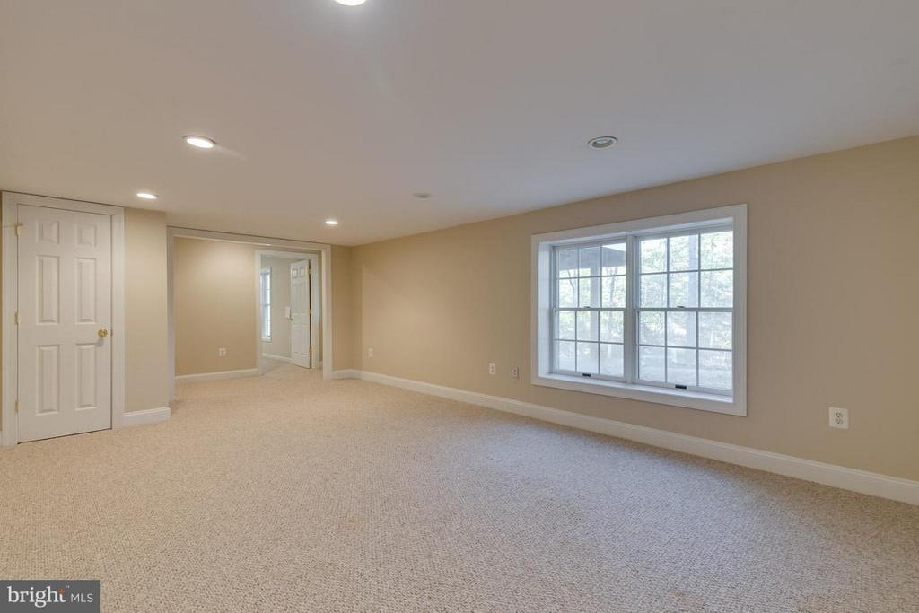 Lower level au-pair suite with separate entrance - 9879 HEMLOCK HILLS CT, MANASSAS
