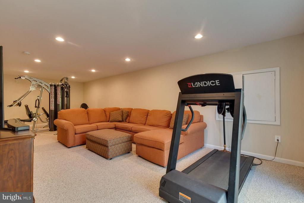 Lower level walk-out rec-room - 9879 HEMLOCK HILLS CT, MANASSAS