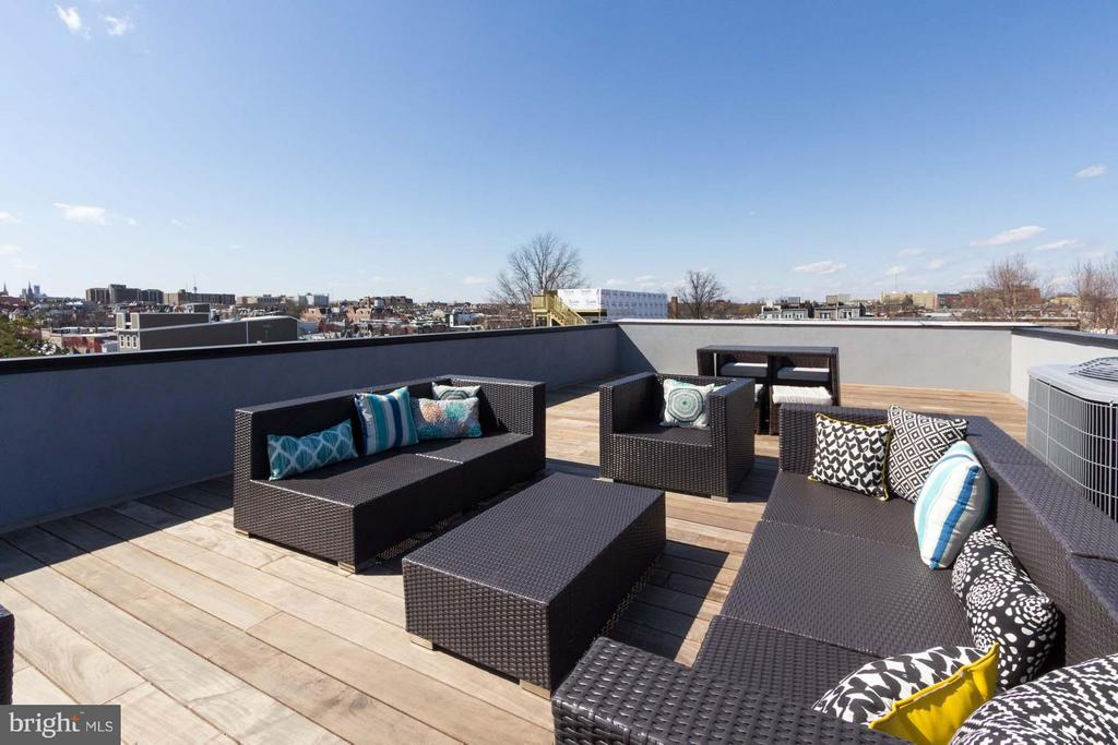 Private Roof-Top Terrace w/Monument, Capitol Views - 727 EUCLID ST NW #B, WASHINGTON