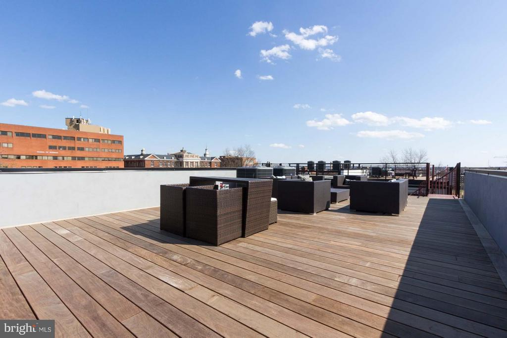 Massive Private Roof-Top Terrace - 727 EUCLID ST NW #B, WASHINGTON