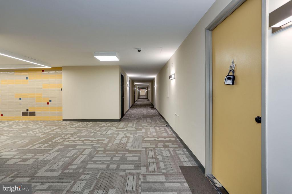 Hallway - 4600 DUKE ST #1500, ALEXANDRIA