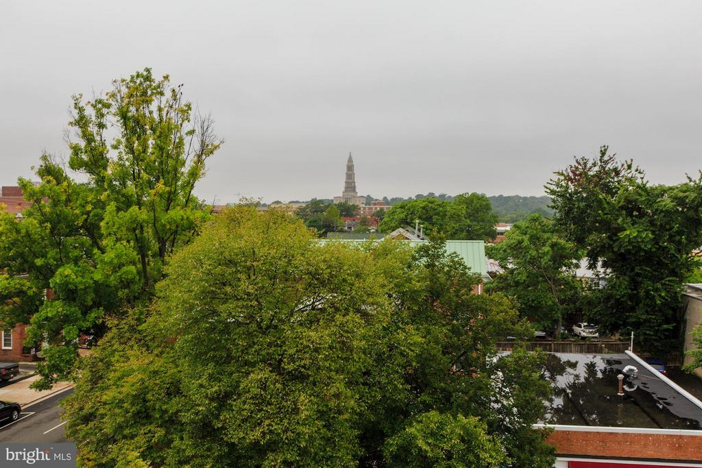 Community roof deck view of Masonic Temple - 1115 CAMERON ST #305, ALEXANDRIA