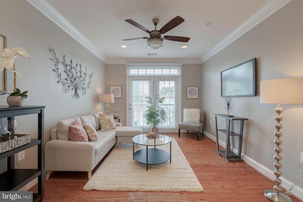 Living Room - 1115 CAMERON ST #305, ALEXANDRIA