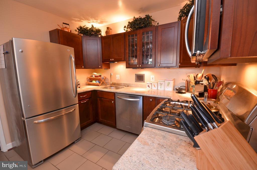 Kitchen - 5500 FRIENDSHIP BLVD #817N, CHEVY CHASE
