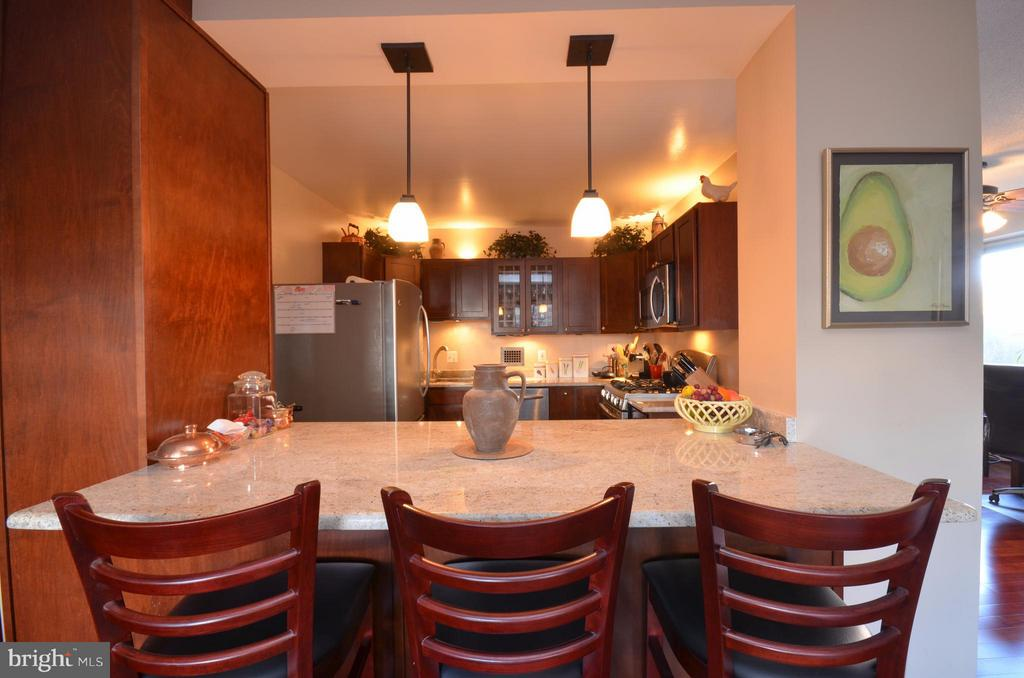 Seating at Island! - 5500 FRIENDSHIP BLVD #817N, CHEVY CHASE