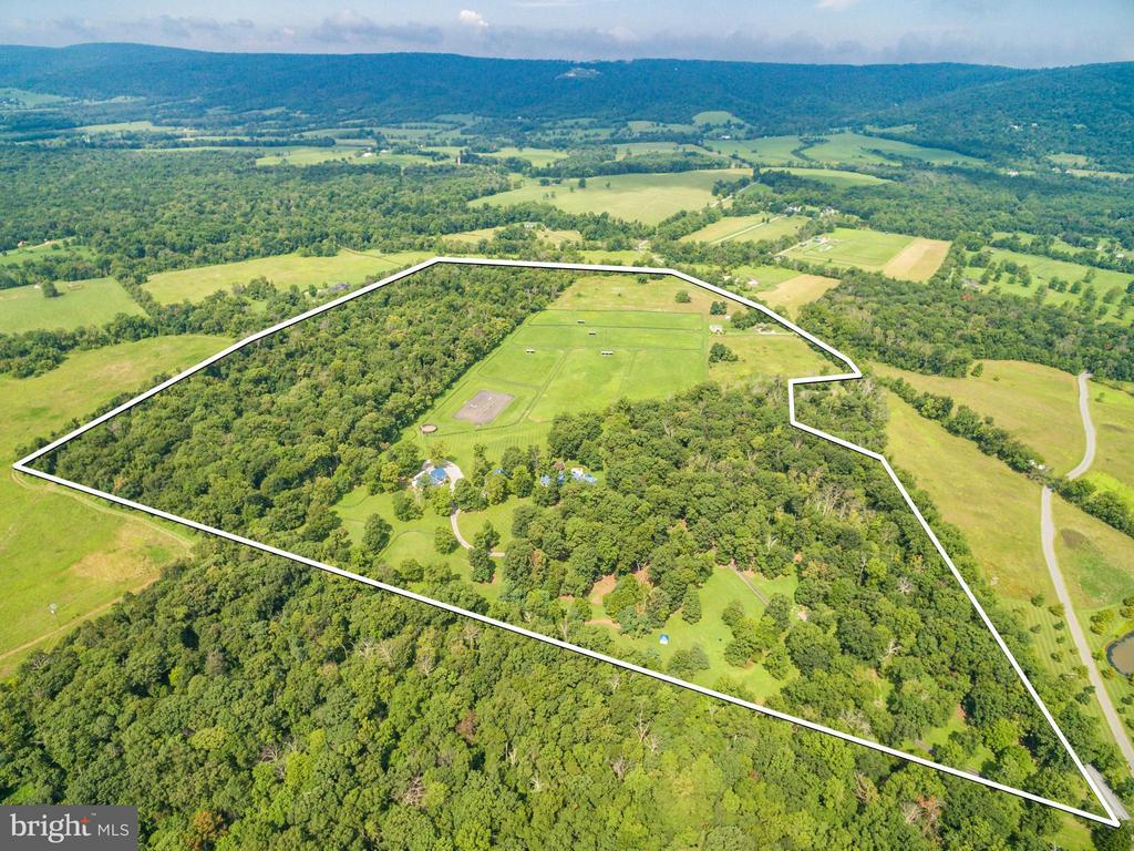 View of 94 Acres - 20022 TRAPPE RD, BLUEMONT