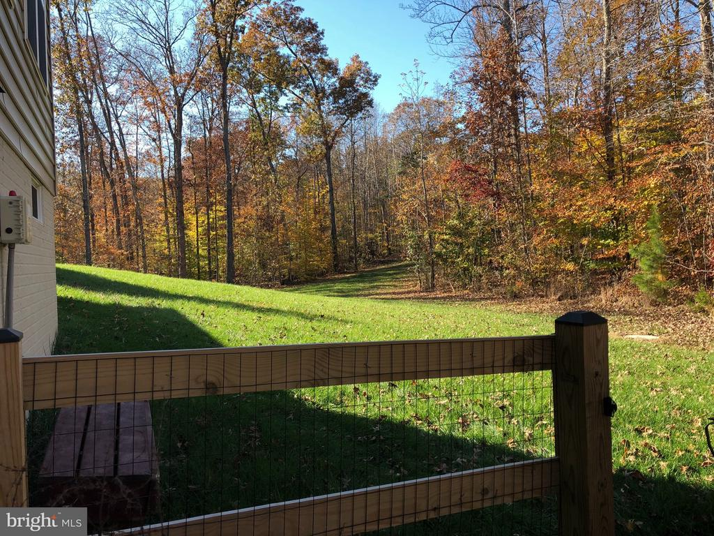 Estate sized lot with tons of space. - 6 SCARLET FLAX CT, STAFFORD
