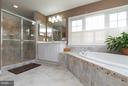 Giant soaking tub and separate shower. - 43857 RIVERPOINT DR, LEESBURG