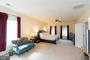 Master bedroom - 43857 RIVERPOINT DR, LEESBURG