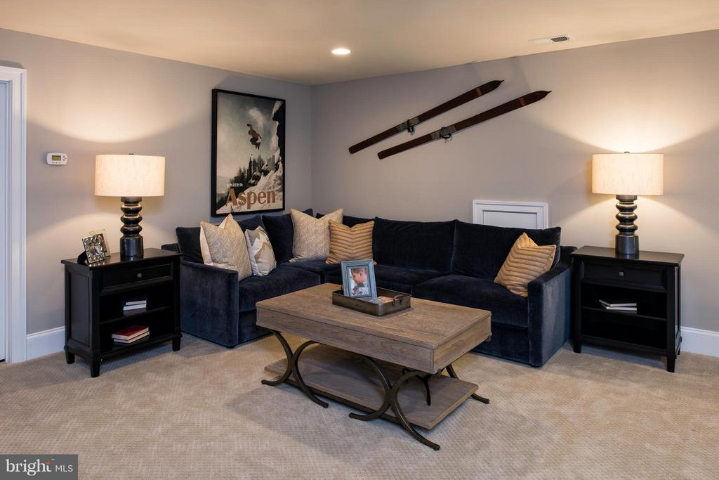 Basement - 6712 RICKETTS CT, CENTREVILLE