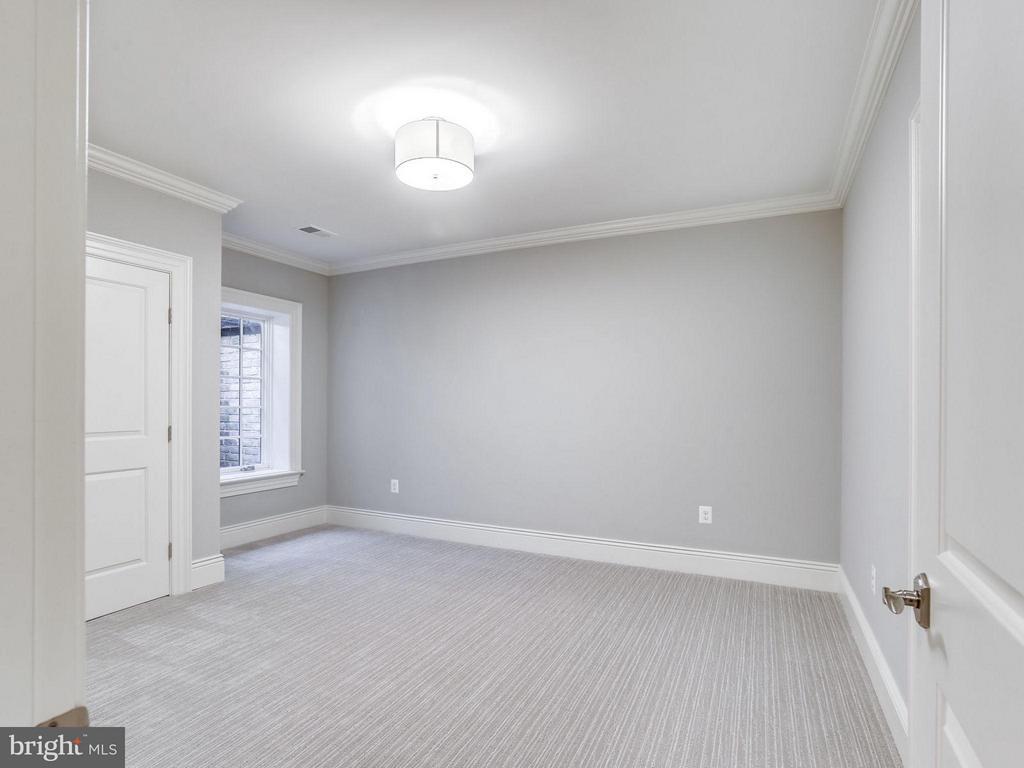 Lower Level Bedroom - 3200 ABINGDON ST, ARLINGTON