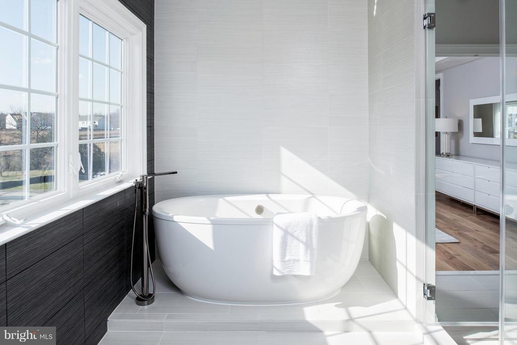 Bath (Master) - 24899 DEEPDALE CT, ALDIE
