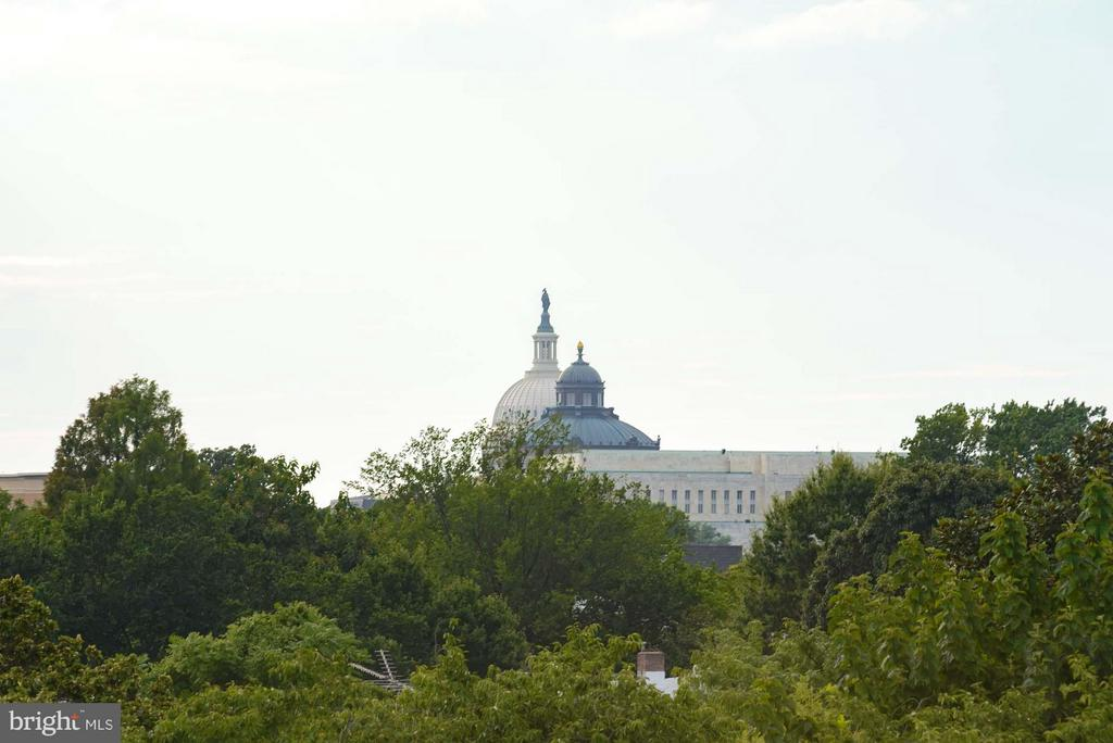 Permanent Capitol Views from private rooftop - 1313 D ST SE, WASHINGTON