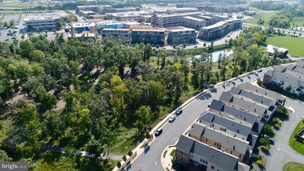 Walk thru the woods to One Loudoun towncenter - 20385 SAVIN HILL DR, ASHBURN
