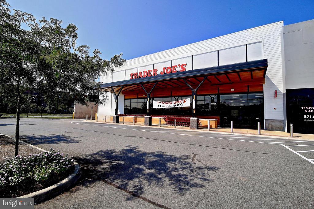 Trader Joe's is just a walk thru the park away - 20385 SAVIN HILL DR, ASHBURN