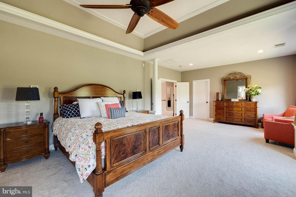 Recessed Lighting, Ceiling Fan & New Carpet - 40728 CHEVINGTON LN, LEESBURG