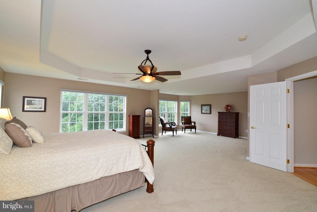 Lots of light in MBR w/views of trees - 13534 VILLAGE GREEN DR, LEESBURG