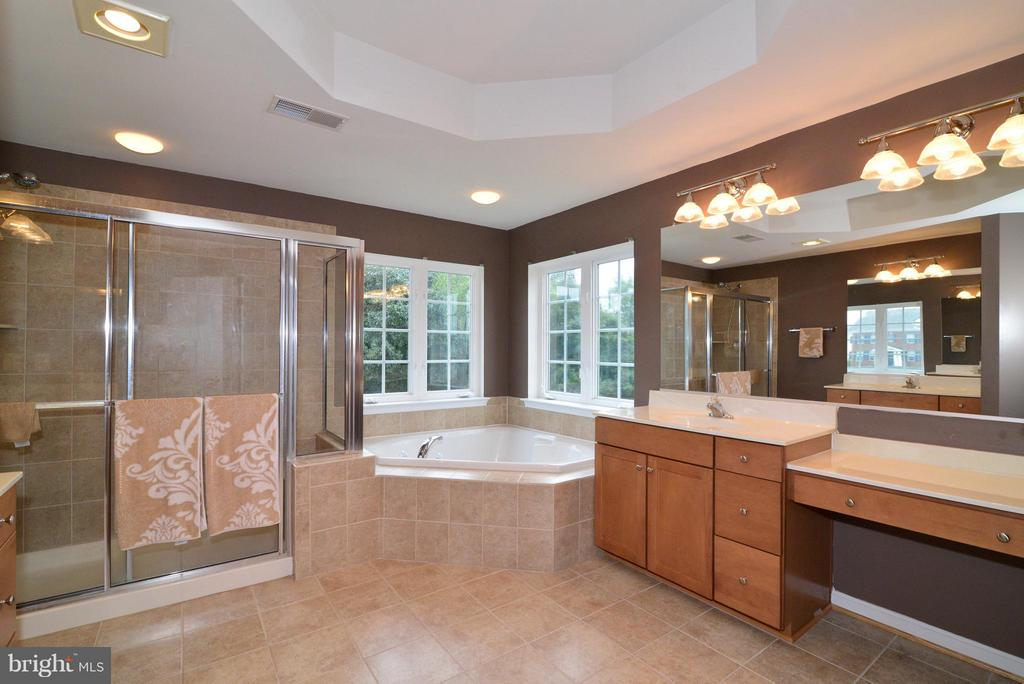 Large MBR bathroom w/dual vanities - 13534 VILLAGE GREEN DR, LEESBURG