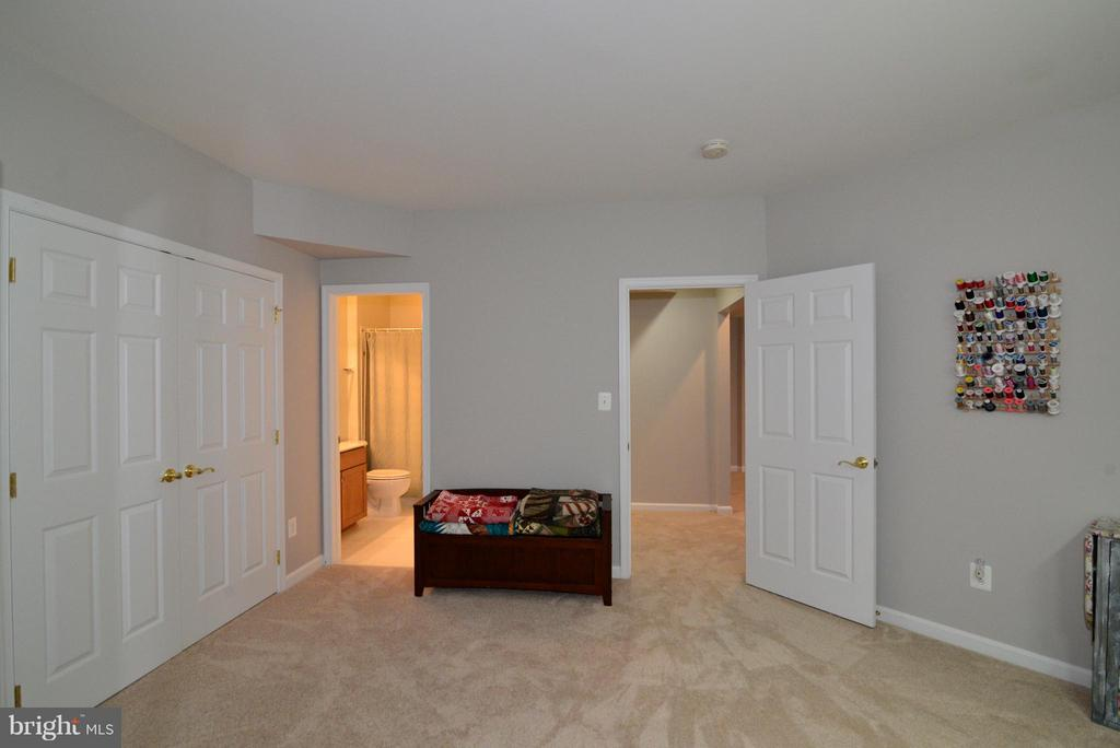 Bonus room in basement leads to 4th full bath - 13534 VILLAGE GREEN DR, LEESBURG