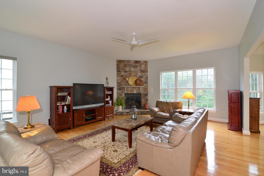 Lots of windows and stone fireplace in family room - 13534 VILLAGE GREEN DR, LEESBURG