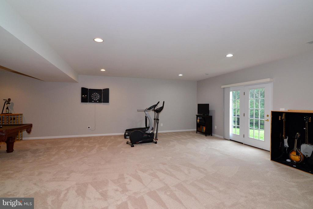 Basement walks out to backyard - 13534 VILLAGE GREEN DR, LEESBURG
