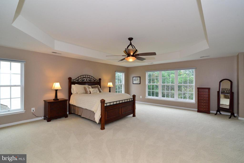 Large MBR with tray ceiling - 13534 VILLAGE GREEN DR, LEESBURG
