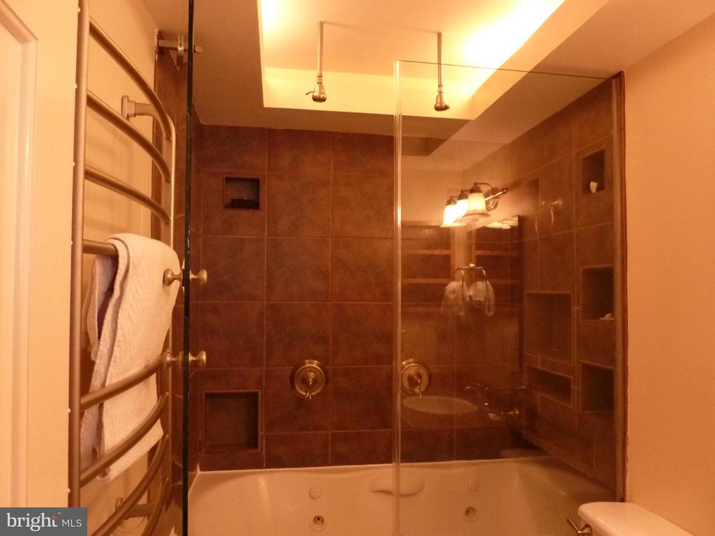 Spa Like Master Bath with Overhead Showers - 686 S COLUMBUS ST, ALEXANDRIA