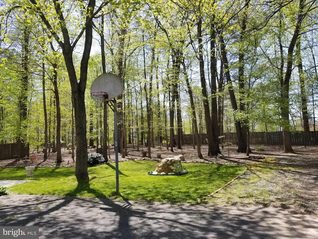 Flat Usable Backyard - 10327 HICKORY FOREST DR, OAKTON