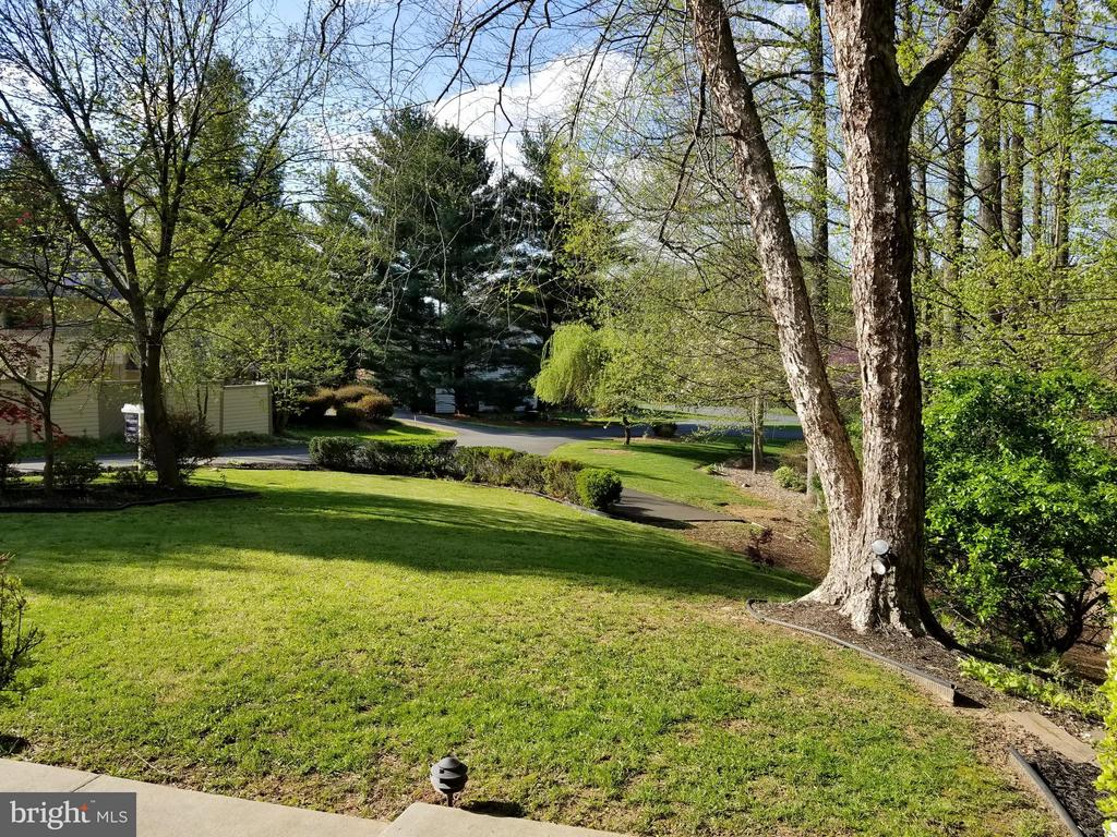 View from Front Door - 10327 HICKORY FOREST DR, OAKTON