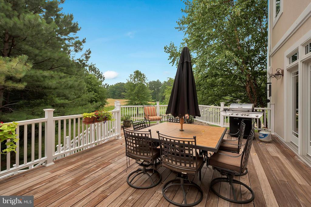 View of Golf Course from Deck - 11403 LITTLE BAY HARBOR WAY, SPOTSYLVANIA