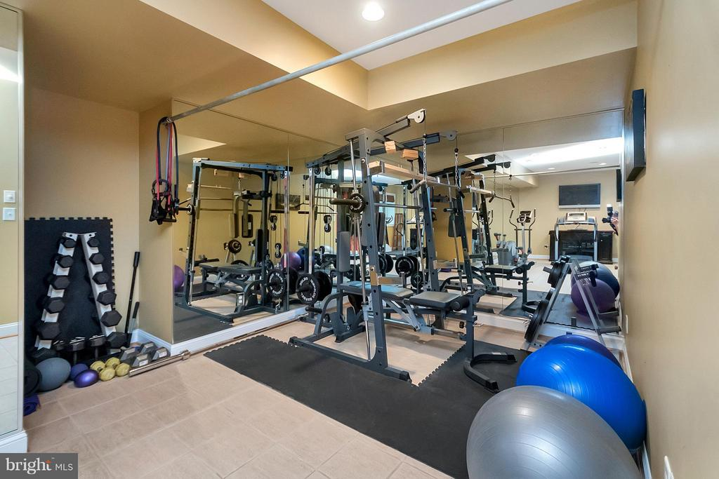 Workout Room - Lower Level - 11403 LITTLE BAY HARBOR WAY, SPOTSYLVANIA