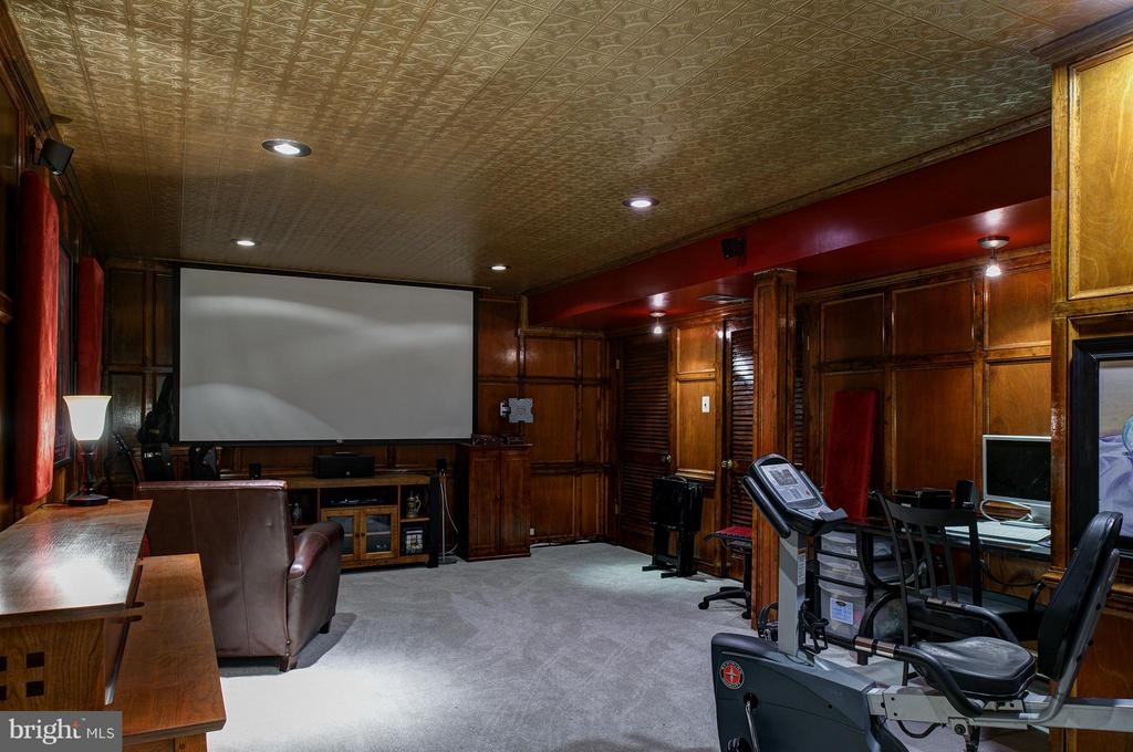 Theater Room - Equipment Conveys - 11920 RICHLAND LN, HERNDON