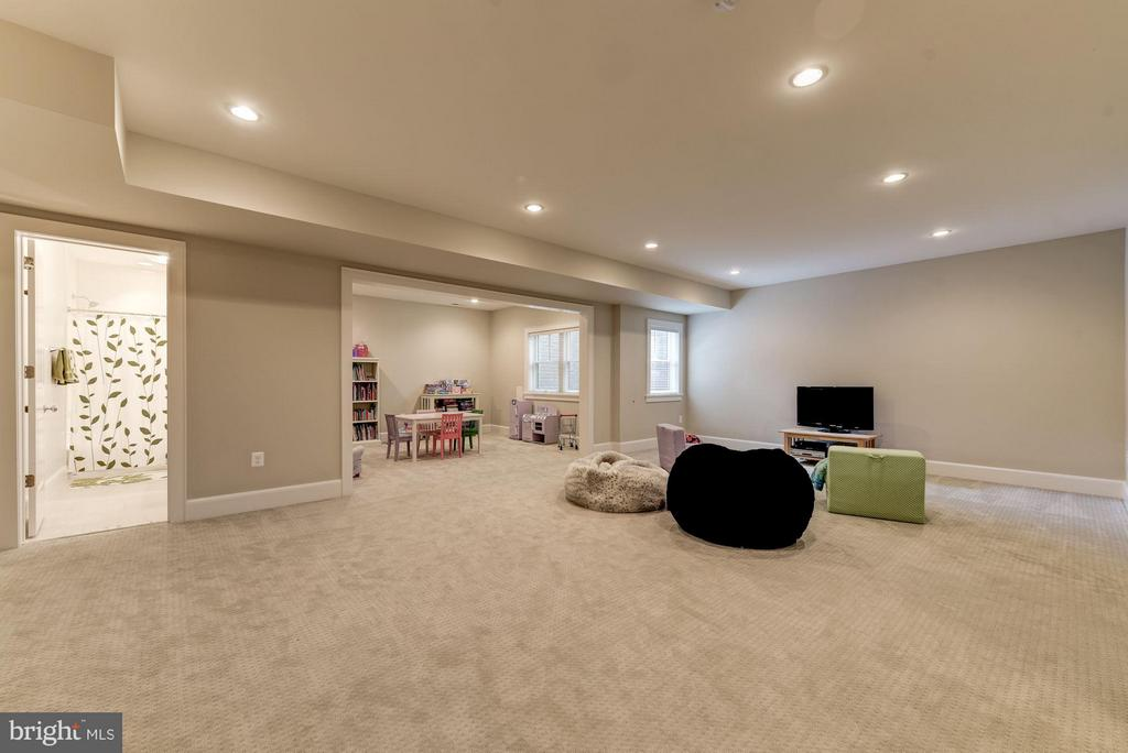 Huge Rec Room/ Basement Space - 4117 18TH ST N, ARLINGTON