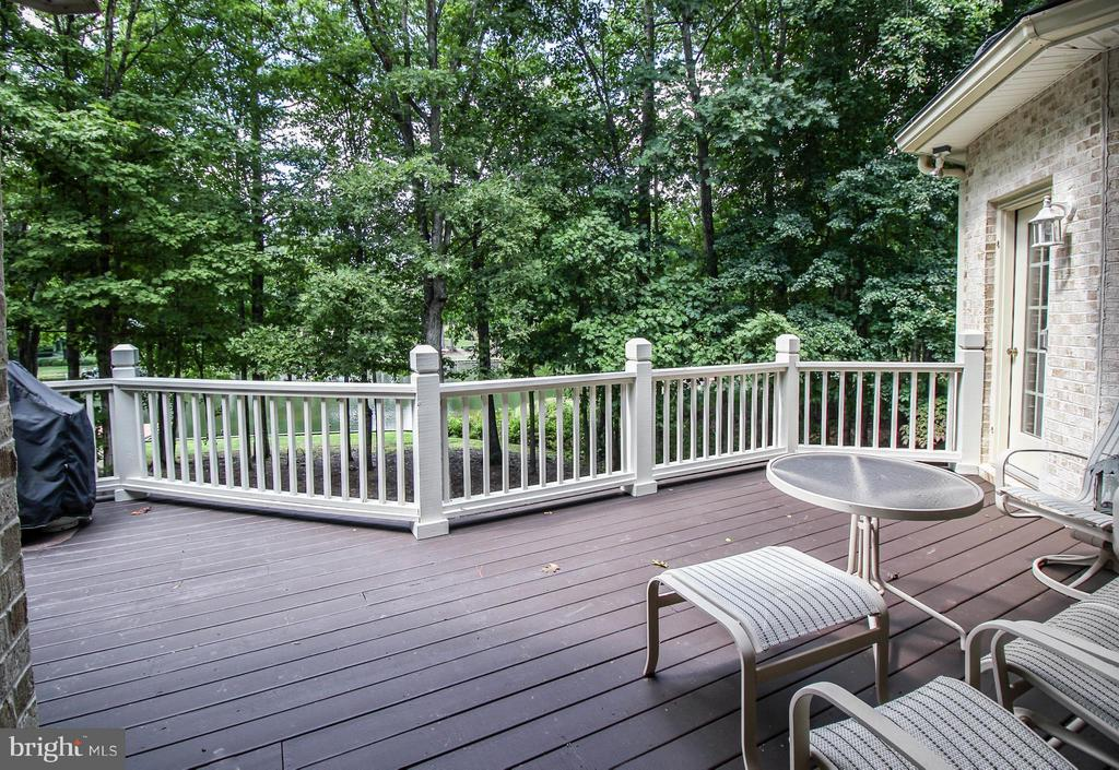 Spacious Deck Overlooks the Lake - 11510 HENEGAN PL, SPOTSYLVANIA