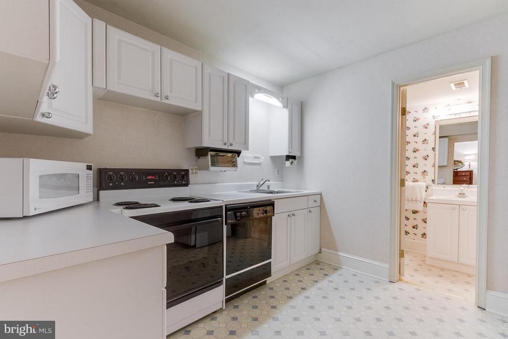 En-Suite kitchen in basement. - 11102 DEVEREUX STATION LN, FAIRFAX STATION