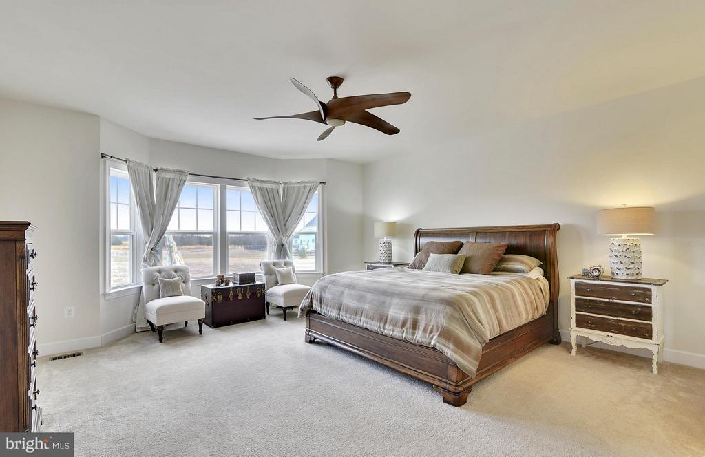 Large First Floor Master Bedroom - 15652 BERKHAMSTEAD PL, LEESBURG
