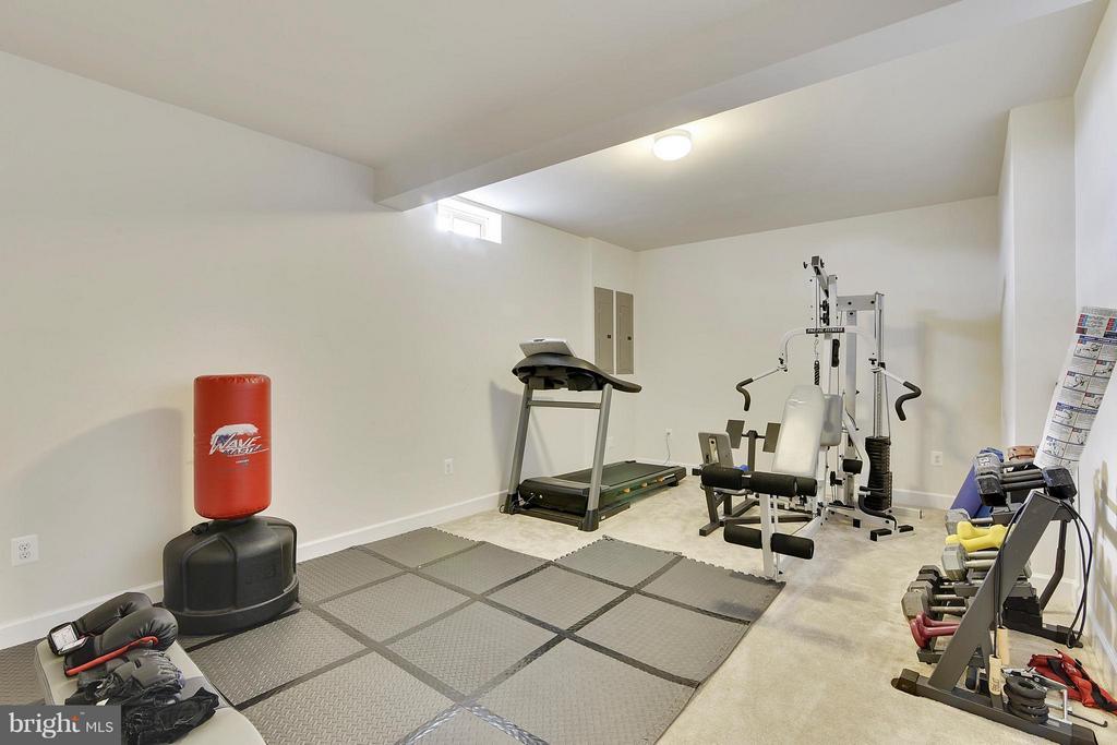 Exercise Room - 15652 BERKHAMSTEAD PL, LEESBURG